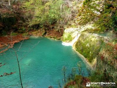 Parques Naturales Urbasa-Andía y Aralar - Nacedero del Urederra; trekking madrid; grupos de senderi